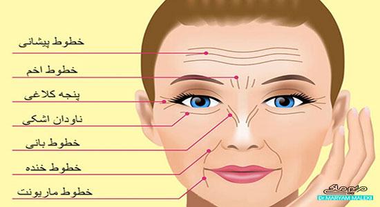 انواع خطوط چهره