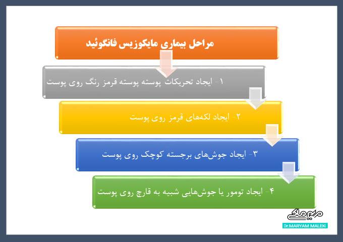 مراحل بیماری ام اف (MF)