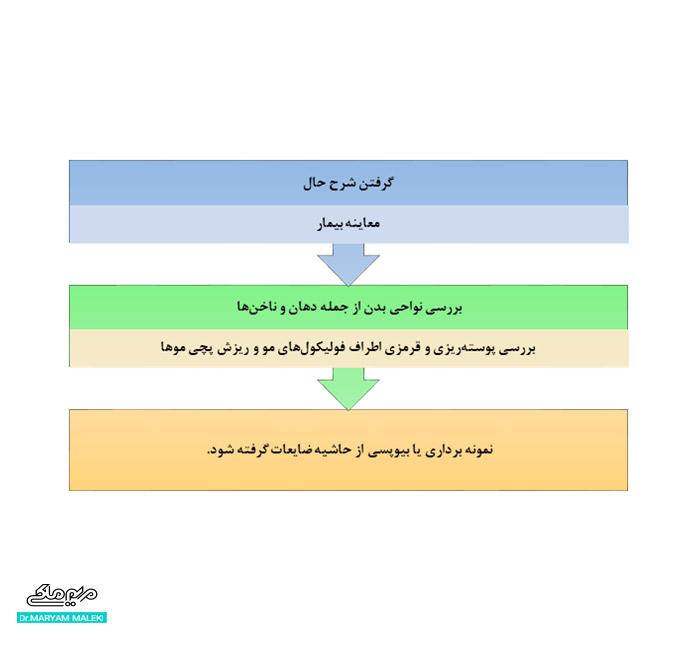 تشخیص لیکن پلان مویی