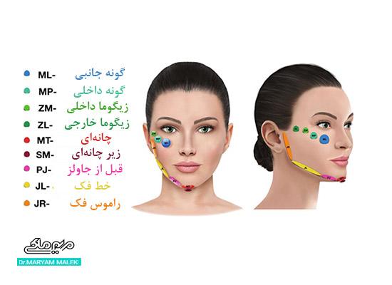 ساختار صورت