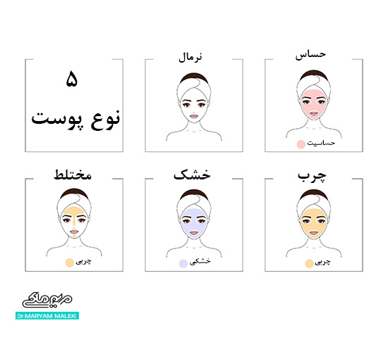 5 نوع مختلف پوست